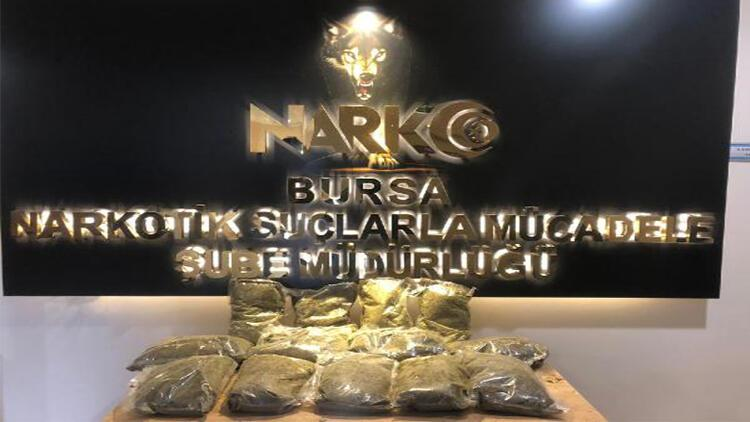 Bursa'da, ormanlıktaki 12 kilo uyuşturucuyu 'Galya' buldu