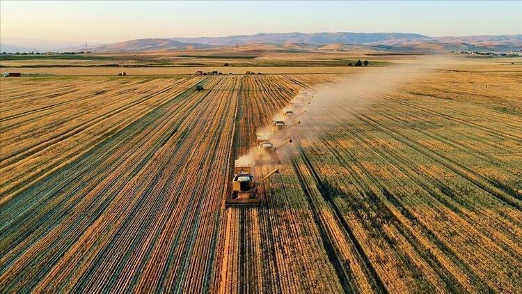 Tarım ve Orman Bakanlığı, sağladığı desteklerle organik üretim ve tüketimi artırıyor