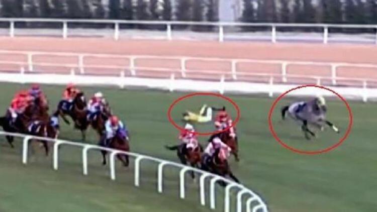 Adana'daki at yarışı kazalarıyla ilgili ilk hamle! Araştırma başlatıldı