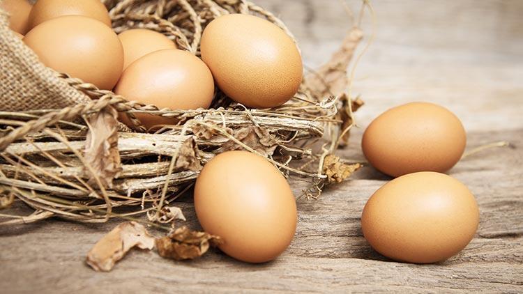 YUM-BİR Başkanı Afyon: Yumurtaya zam söz konusu değil