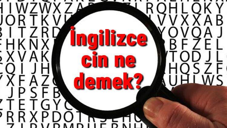 İngilizce cin ne demek? Cin kelimesinin İngilizce yazılışı, okunuşu ve söylenişi
