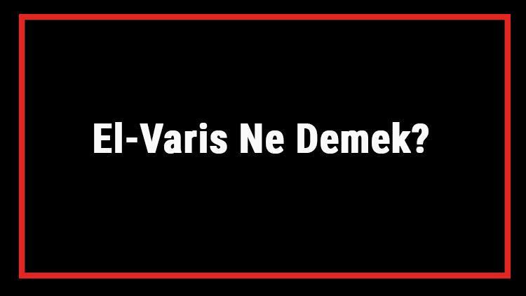 El-Varis Ne Demek? El Varis Esması Türkçe Anlamı Ve Ya Varis Zikrinin Fazileti İle Faydaları