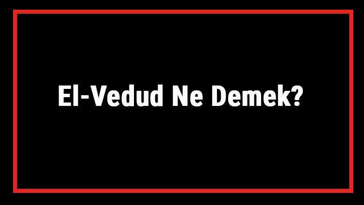 El-Vedud Ne Demek? El Vedud Esması Türkçe Anlamı Ve Ya Vedud Zikrinin Fazileti İle Faydaları