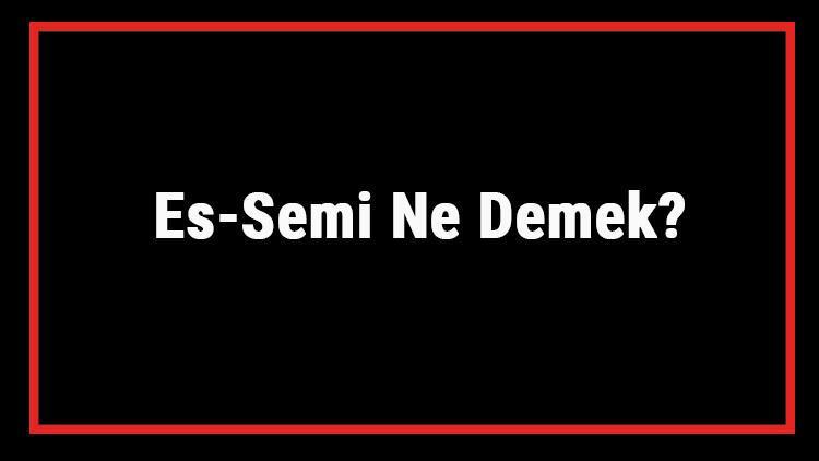 Es-Semi Ne Demek? Es Semi Esması Türkçe Anlamı Ve Ya Semi Zikrinin Fazileti İle Faydaları