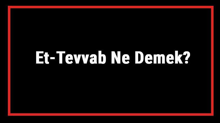 Et-Tevvab Ne Demek? Et Tevvab Esması Türkçe Anlamı Ve Ya Tevvab Zikrinin Fazileti İle Faydaları
