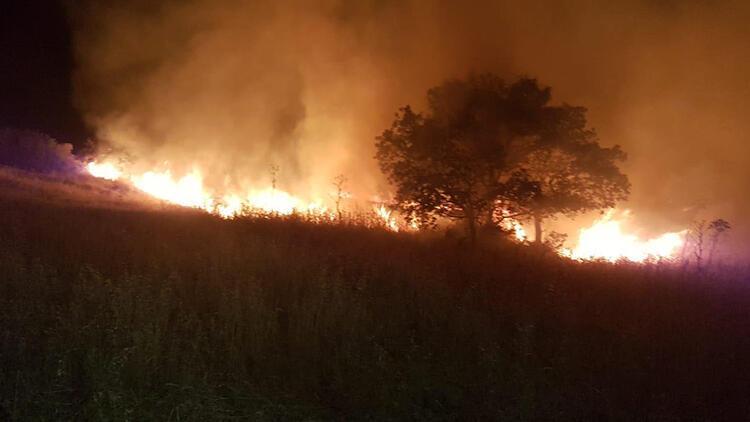 Bodrum'da otluk ve makilik alanda yangın