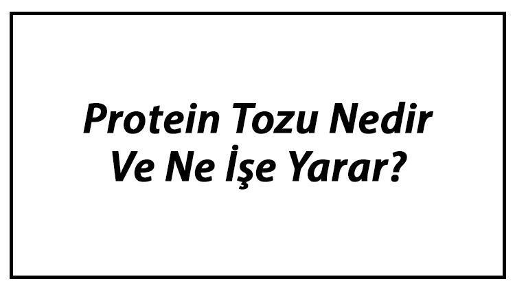 Protein Tozu Nedir Ve Ne İşe Yarar? Protein Tozu Kullanımı, Yararları Ve Zararları Hakkında Bilgi