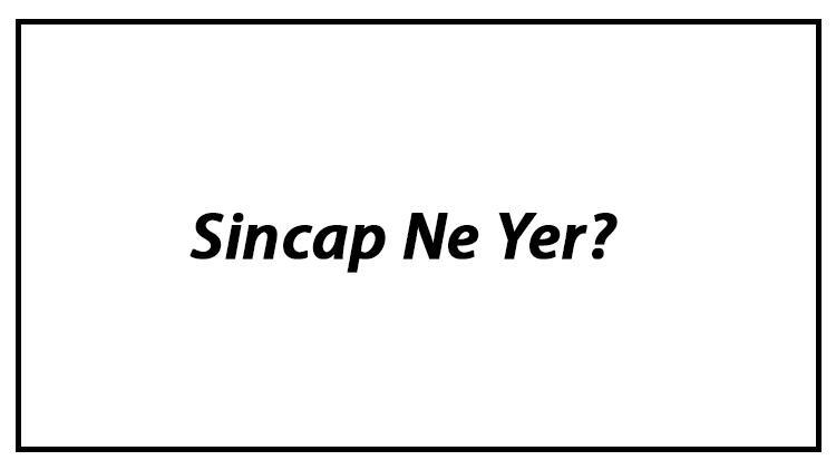 Sincap Ne Yer? Yavru Sincaplar Nasıl Beslenir Ve Sincapların En Çok Sevdiği Besinler Neler
