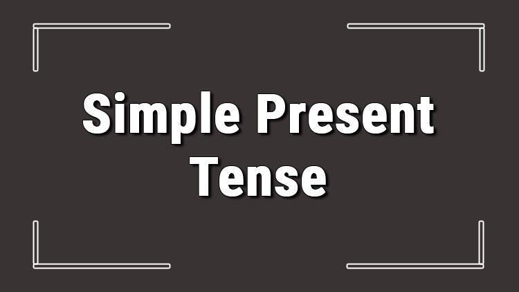 Simple Present Tense (İngilizce geniş zaman) olumlu, olumsuz ve soru cümleleri ile alıştırmalı konu anlatımı