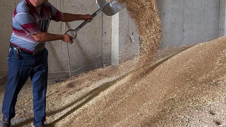 Buğday silosuna düşen işçi hayatını kaybetti