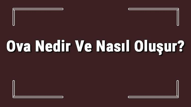Ova Nedir Ve Nasıl Oluşur? Ova Oluşabilmesi İçin Gerekli Koşullar Ve Türkiye'deki Ovalar