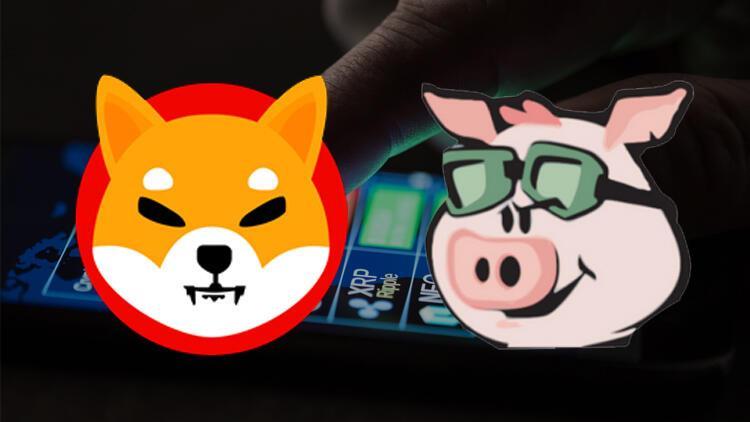 Son dakika... Kripto paralarda Shiba Inu ve Pig Finance rüzgarı
