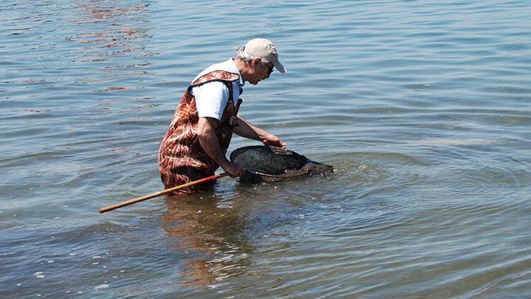 Marmara'da deniz salyası tedirginliği sürüyor