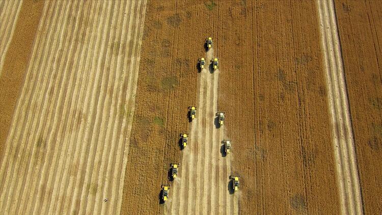 Çiftçiler hububat alım fiyatlarından memnun