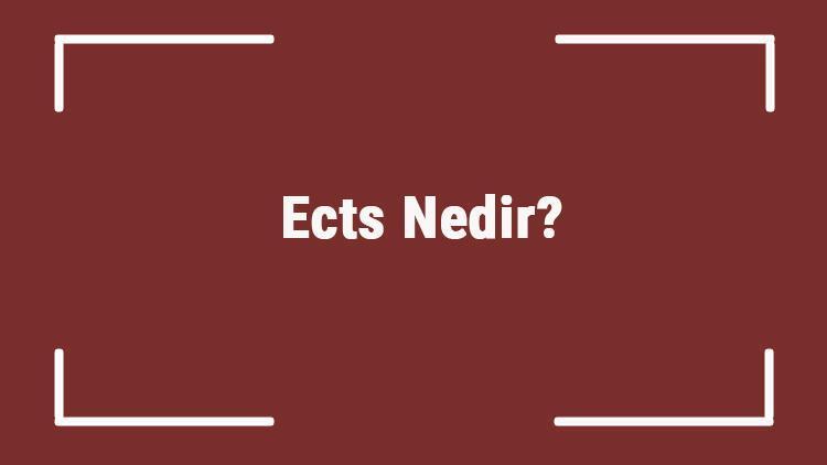 Ects Nedir? Akts Ve Ects Terimleri Aynı Mı? 1 Ects Kaç Kredi Yapar?