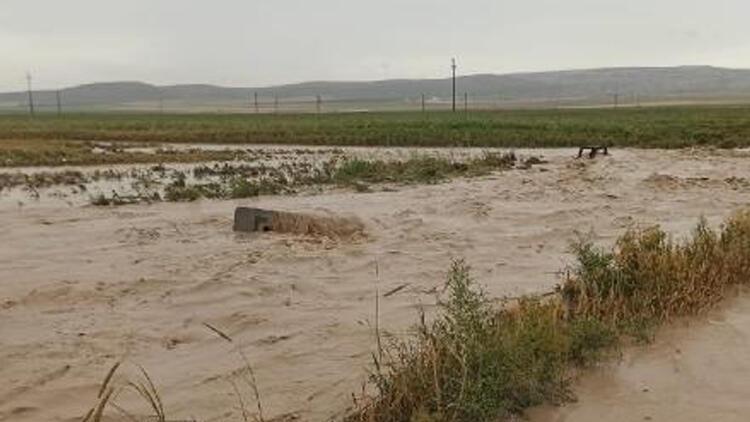 Konya'da sağanak! Tarım arazileri suyla doldu