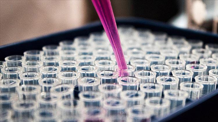 ABD, koronavirüse karşı kolları sıvadı! 3 milyar dolardan fazla destek verecek