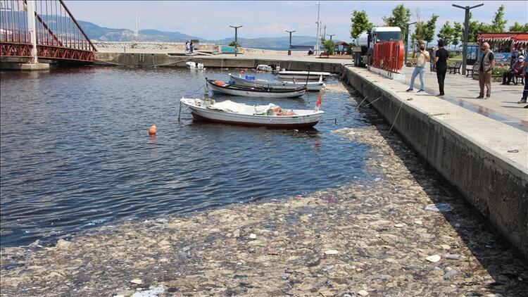 Bakan Kurum: Marmara Denizi'nde 4 bin 202 metreküp müsilajı temizledik