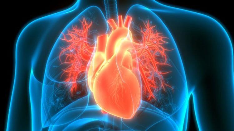 Kalp yetmezliğiyle ilgili merak edilenler