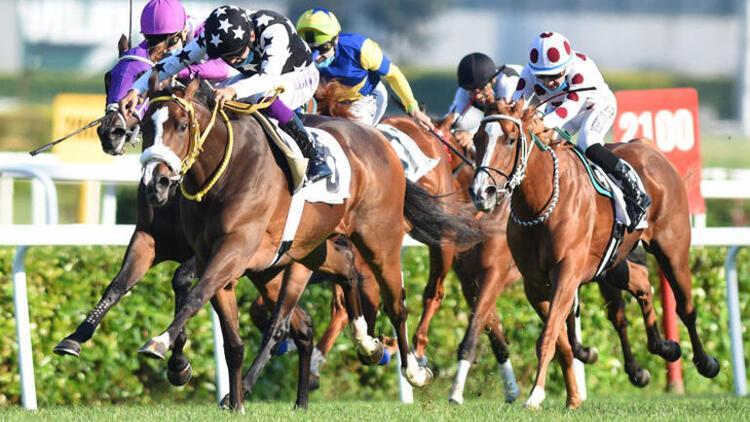 95. Gazi Koşusu'na katılacak atlar belli oldu