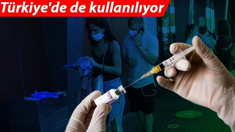 Türkiyede de kullanılan koronavirüs aşısından sevindiren haber