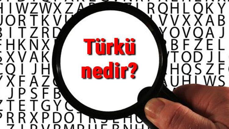 Türkü nedir ve çeşitleri nelerdir? Türkülerin özellikleri ve örnekleri