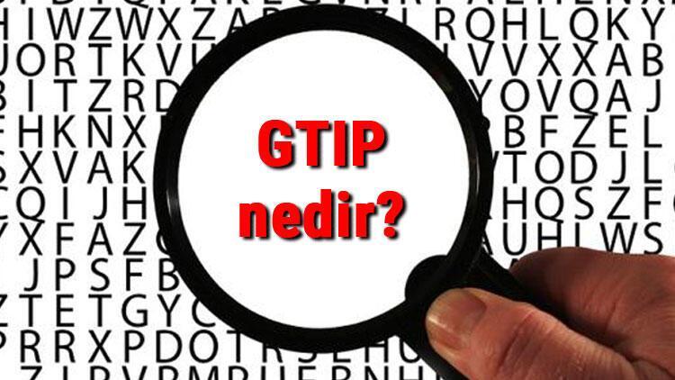 GTIP nedir ve ne işe yarar? GTIP kodu sorgulama işlemi nasıl yapılır