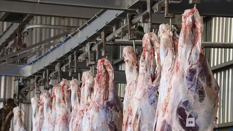 Kurban eti buzdolabına ne zaman koyulur? Kurban eti ne kadar dinlendirilmeli? Uzmanlardan dikkat çeken açıklamalar!