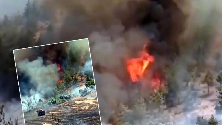 Son dakika: Kahramanmaraş'ta orman yangını paniği