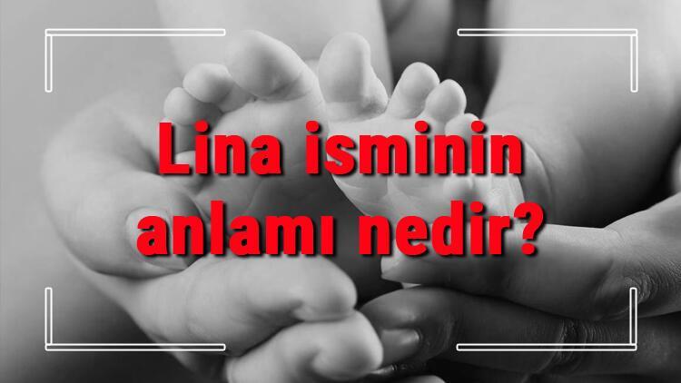Lina isminin anlamı nedir? Lina ne demek? Lina adının özellikleri, analizi ve kökeni