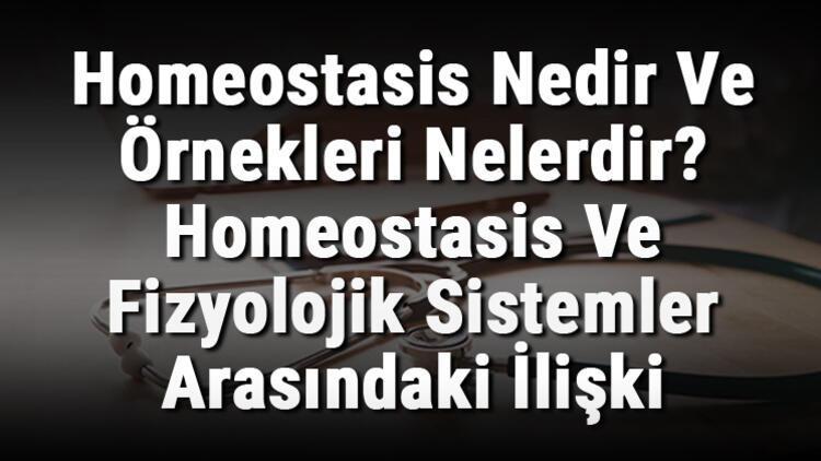 Homeostasis Nedir Ve Örnekleri Nelerdir? Homeostasis Ve Fizyolojik Sistemler Arasındaki İlişki