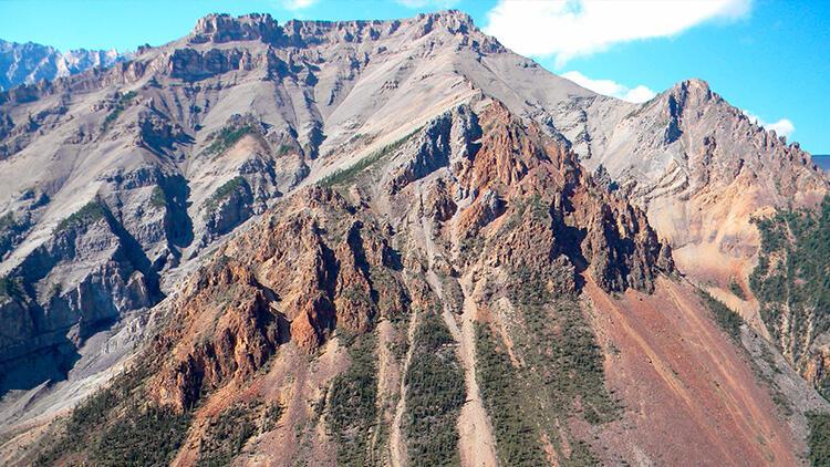 Kanadada heyecanlandıran keşif: 890 milyon yıl öncesine ait hayvan fosili bulundu