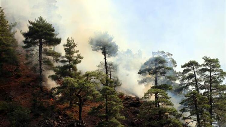 Kayseride Aladağlar Milli Parkındaki yangın kontrol altına alındı