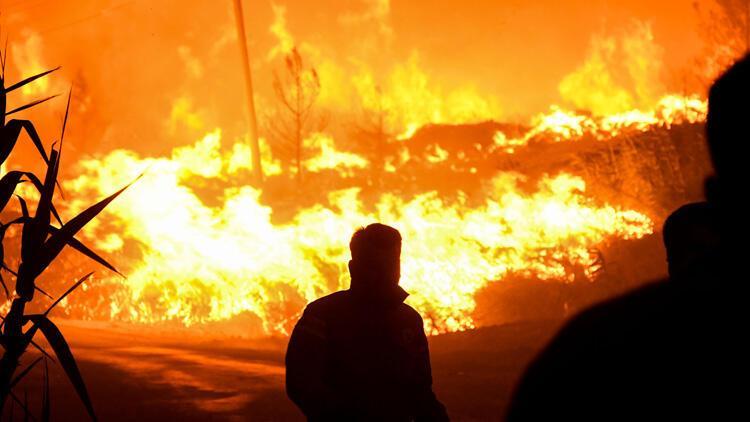 Son dakika... Yangınlarla ilgili harekete geçildi Özel ekipler kuruldu