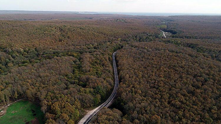 Kırklarelinde ormanlık alanlara giriş 31 Ağustosa kadar yasaklandı