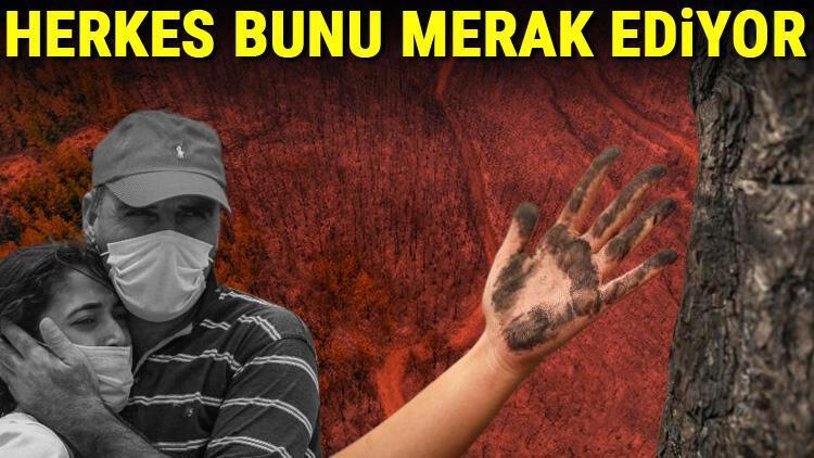 Son dakika... Herkesin aklındaki soru: Orman yangınları aynı anda nasıl başladı Ciğerlerimizi yakan 4 neden