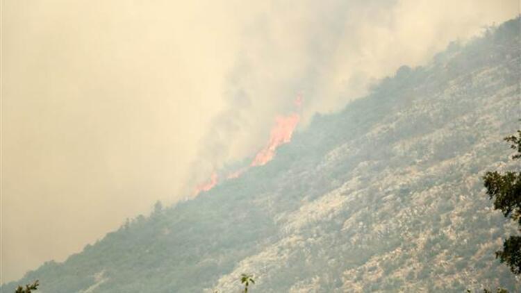 Son dakika... Antalyanın Gündoğmuş ve Alanyadaki orman yangınları kontrol altına alınmaya çalışılıyor Mahalleler boşaltıldı