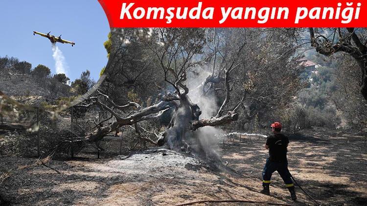 Yunanistanda orman yangınları sürüyor: 110 çocuğun bulunduğu tatil kampı tahliye edildi