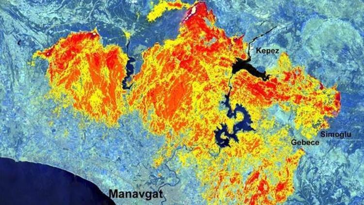 Manavgatta 30 bin 632 hektarlık alanda yangın etkili olmuş Yüzey sıcaklığı 95 dereceye ulaştı