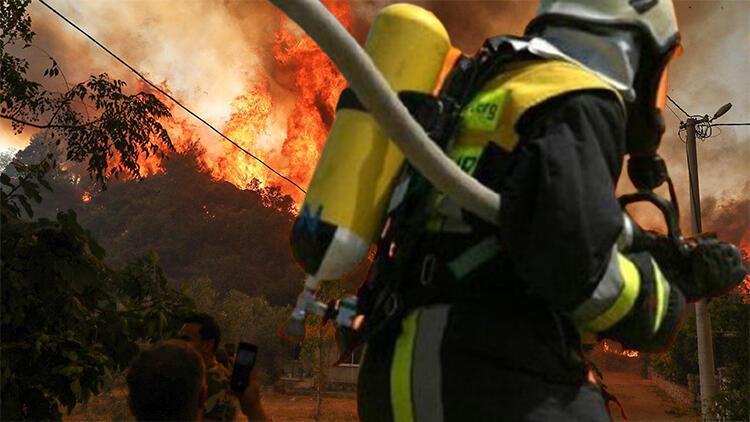 Orman yangınları neden artıyor, hangi yıkıcı sonuçları beraberinde getiriyor