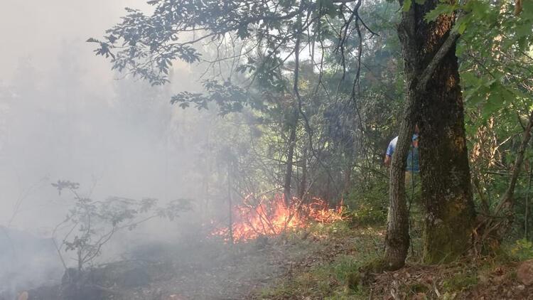 İnegölde çıkan orman yangını 1 saatte söndürüldü