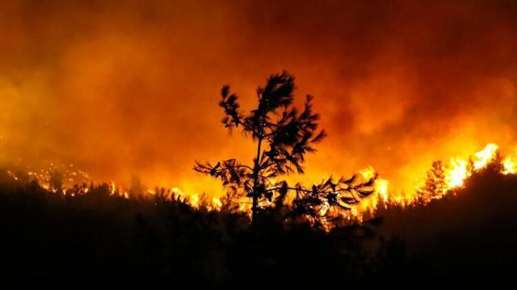 Bakan Pakdemirli son durumu açıkladı 191 yangın kontrol altında