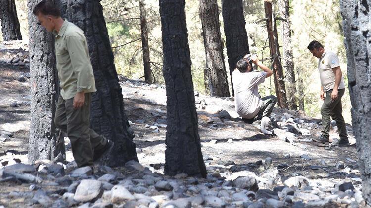 Kayseride 80 hektar alanın yandığı Aladağlarda 24 saat nöbet