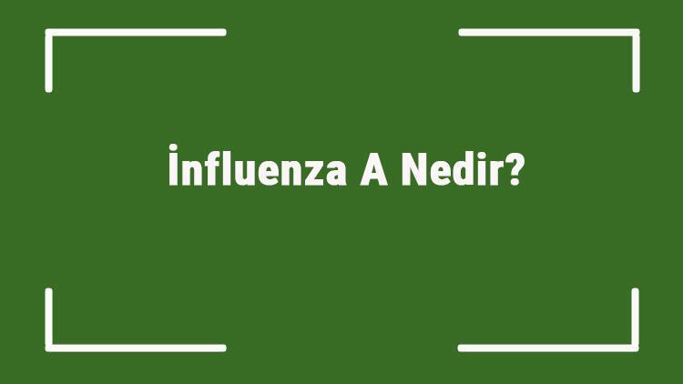 İnfluenza A Nedir Virüsün Bulaşma Süresi Ne Kadar İnfluenza A Virüsü Belirtileri Ve Tedavisi