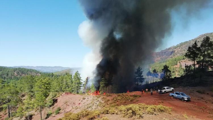 Muğlada orman yangını Ekipler müdahale ediyor