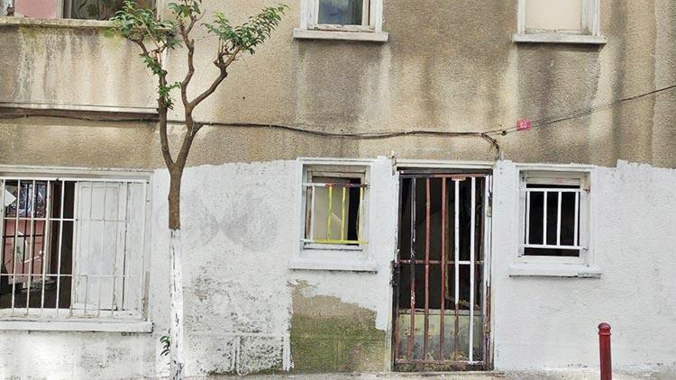 Dehşet evi Kediyi boyayıp cama astı