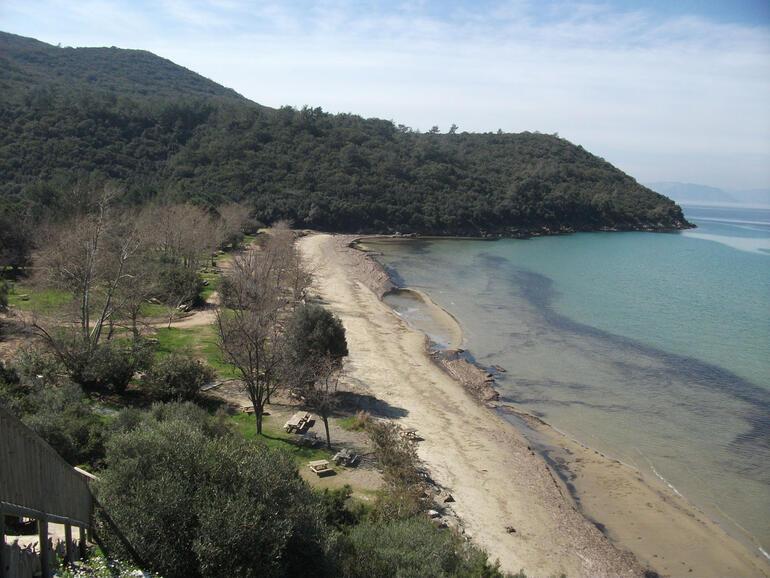Cennetin yansıması: Dilek Yarımadası – Büyük Menderes Deltası Milli Parkı