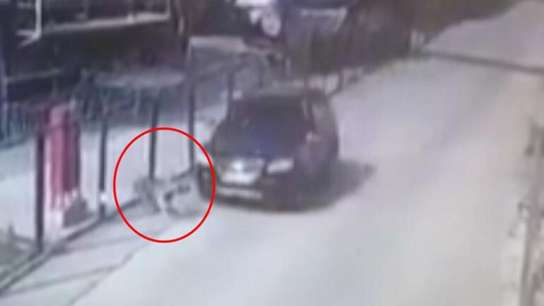 Bursa'da dehşete düşüren an! Serbest bırakıldı…