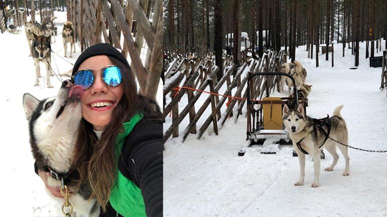 Kuzey Işıkları Gezisi: Lapland - Rovaniemi - Finlandiya