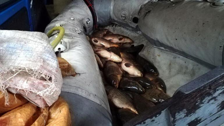 Usulsüz yöntemlerle yasa dışı avcılık yapan 3 kişiye ceza uygulandı